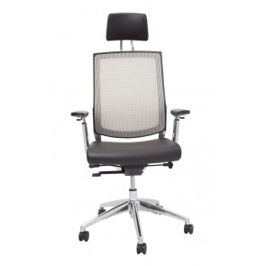 Ergo 2025 Executive Mesh Chair - High Back Front Sliver